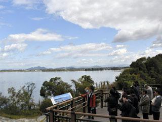 琵琶湖博物館に新しく設置された樹冠トレイルの展望デッキ