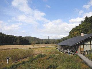敦賀市の中池見湿地とビジターセンター