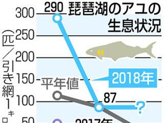 琵琶湖アユの生息状況グラフ