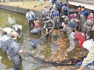 名古屋南区の道徳公園で行われた水抜き駆除の様子
