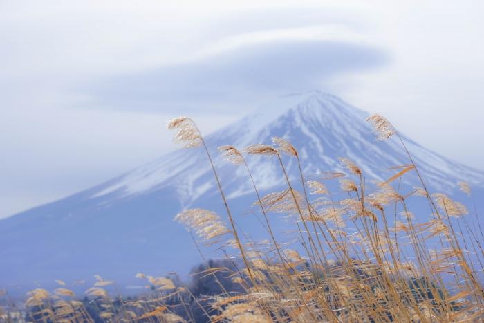 富士たまゆら2019冬_9874