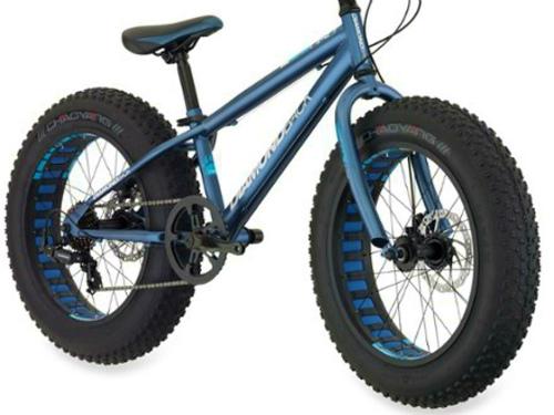 自転車 タイヤ 太い