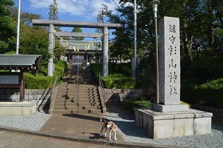 20181007成瀬杉山神社16