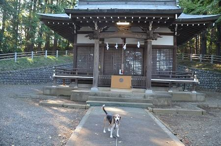 20181007三輪椙山神社12