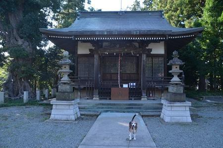 20181007三輪熊野神社11