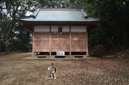20181012江ケ崎子安神社05