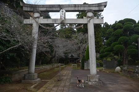 20181012松山神社04