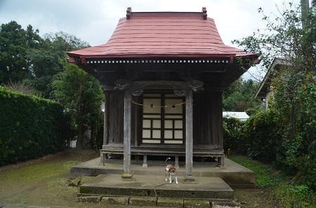 20181012松沢熊野神社35
