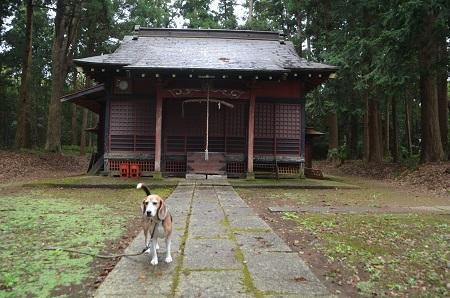 20181012大寺熊野神社06