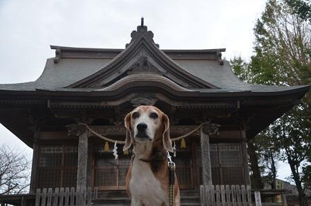 20181012八重垣神社05