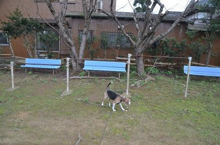 20181019旧・猿田小学校12