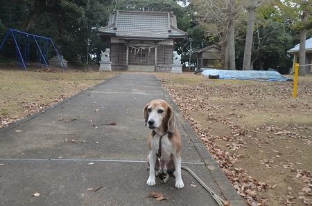 20181019熊野神社05