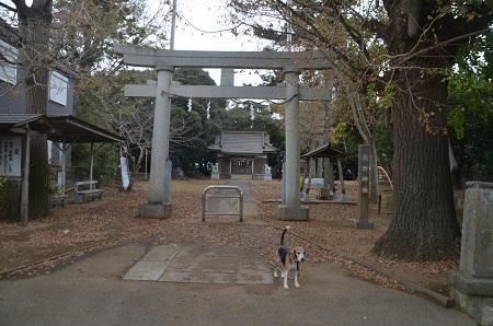 20181019熊野神社02
