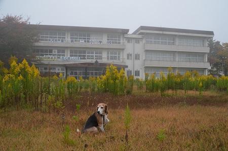 20181029河東第二小学校10