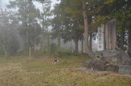 20181029戸の口古戦場跡07