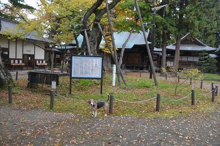 20181029蚕養国神社31