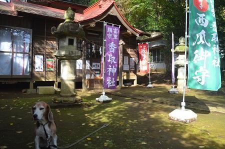 20181105富里香取神社08