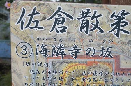20181105海隣寺坂12