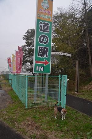 20181109道の駅02