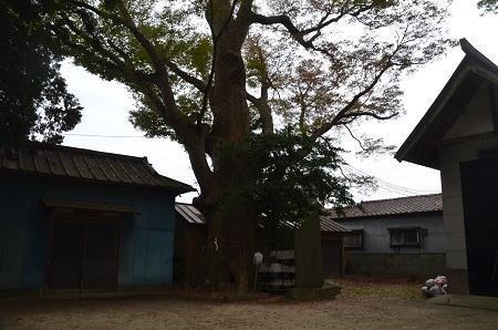 20181119土浦八坂神社30