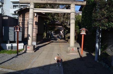20181125印内八坂神社02