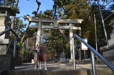 20181125山野浅間神社04