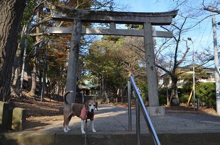 20181125山野浅間神社10