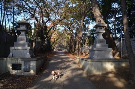 20181125山野浅間神社09