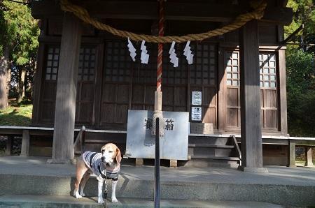 20181208飯守神社07