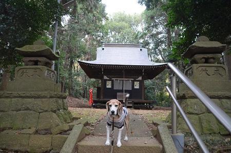 20181208石楯尾神社11