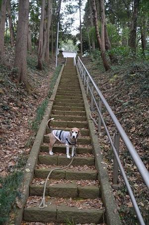 20181208石楯尾神社10