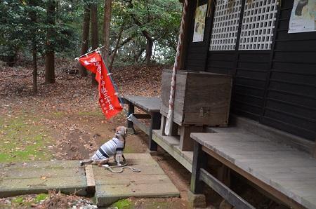 20181208石楯尾神社22