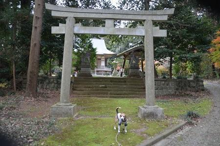 20181211高田神社06