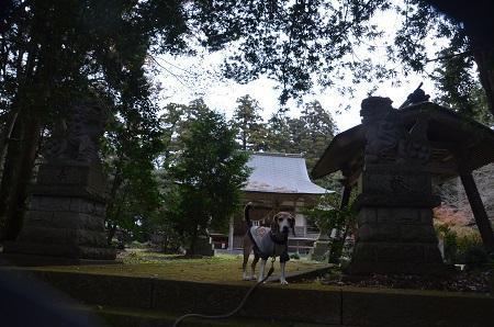 20181211高田神社07