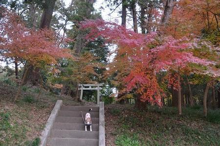 20181211高田神社27
