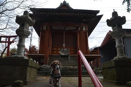 20181208日枝神社06