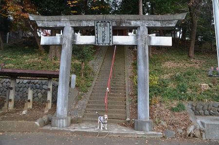 20181208日枝神社01