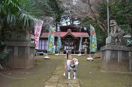 20181211富里香取神社03