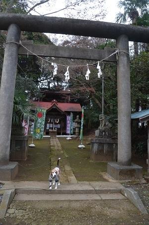 20181211富里香取神社02
