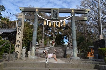 20181219鶴峰八幡神社02