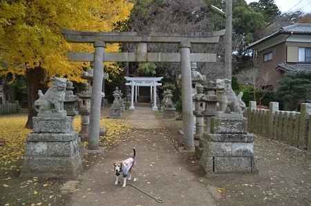 20181211素鵞熊野神社10