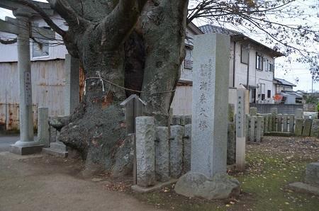20181211素鵞熊野神社08