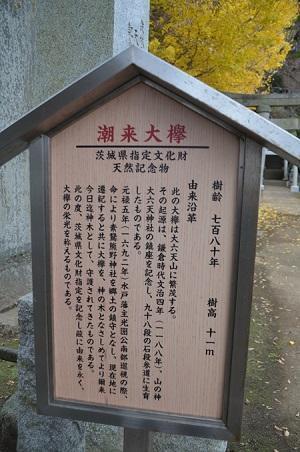 20181211素鵞熊野神社07