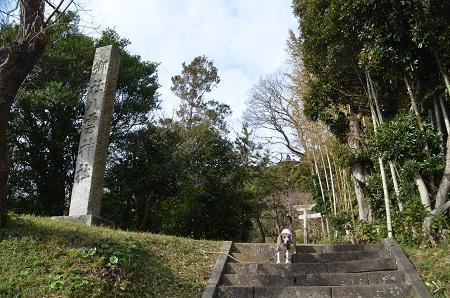 20181219八雲神社02