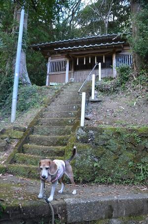 20181219聖真子神社06