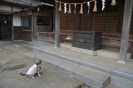 20181220土浦八坂神社09