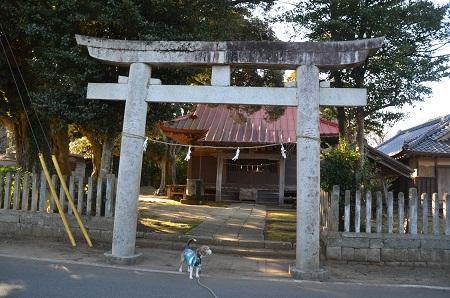 20190101須賀神社01