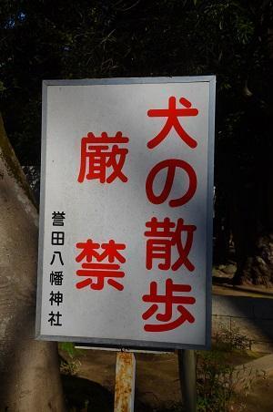 20190102誉田八幡神社04