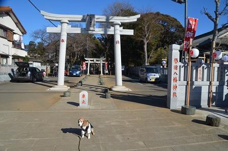 20190102誉田八幡神社03