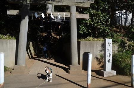 20190102丹生神社02